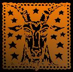 Capricorn star signs
